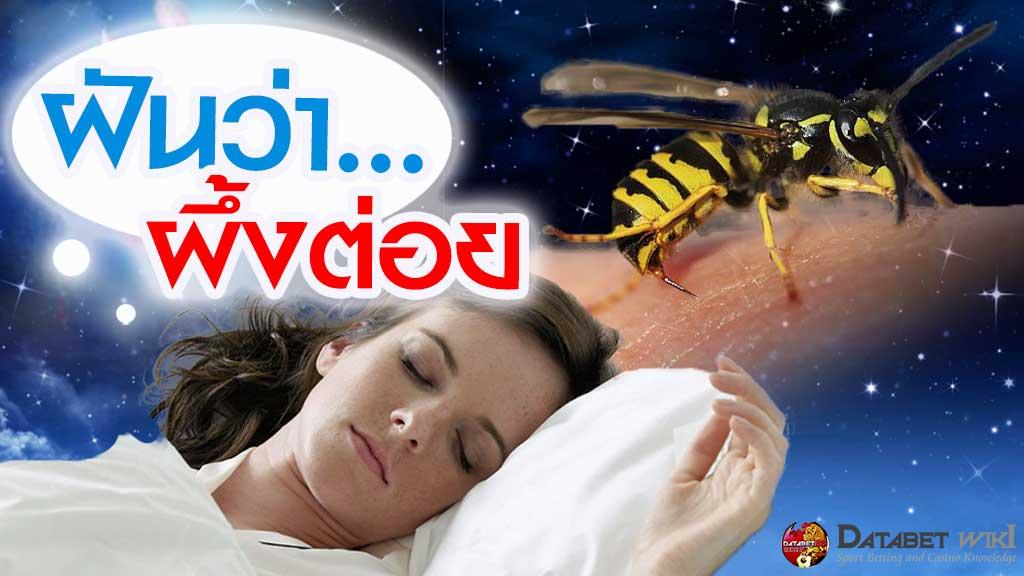 ฝันว่าผึ้งต่อย