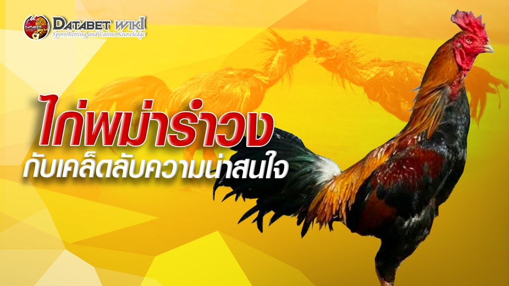 ไก่พม่ารำวง