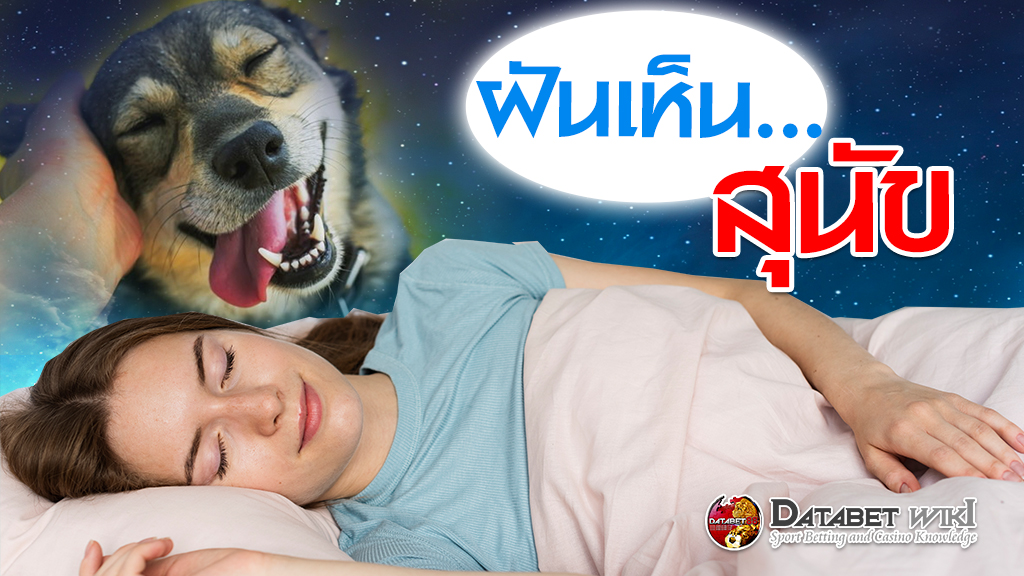 ฝันเห็นสุนัข