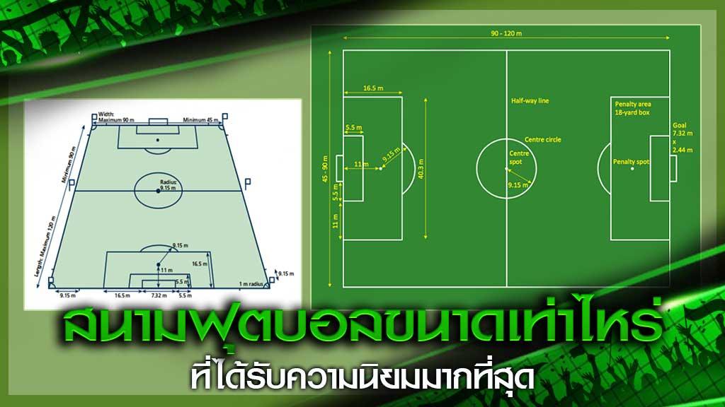 สนามฟุตบอลขนาด