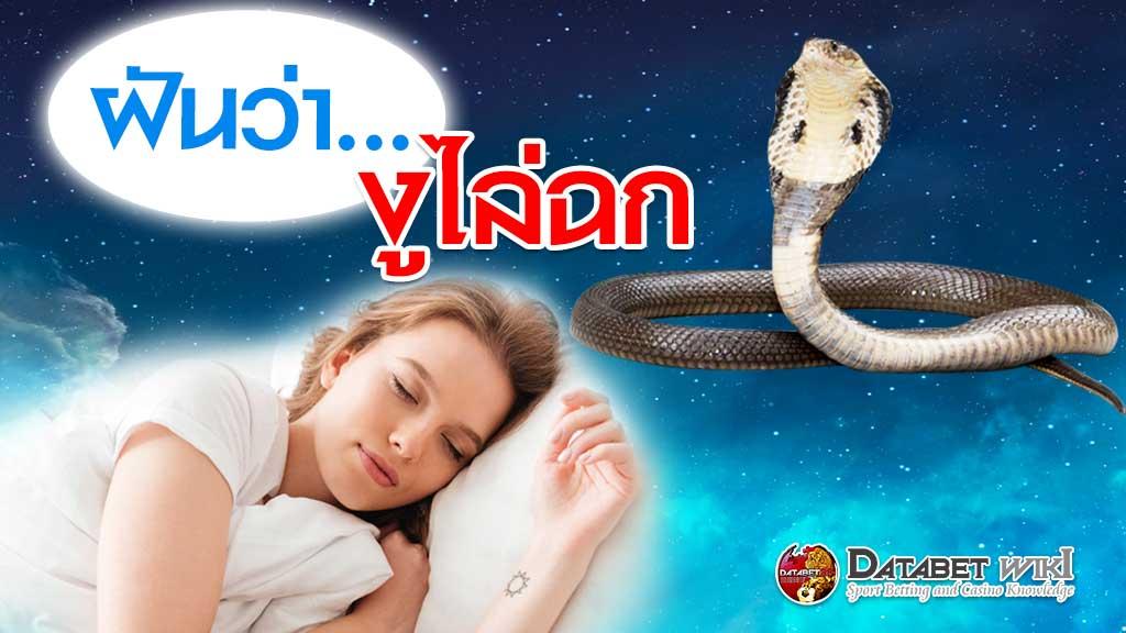 ฝันว่างูไล่ฉก