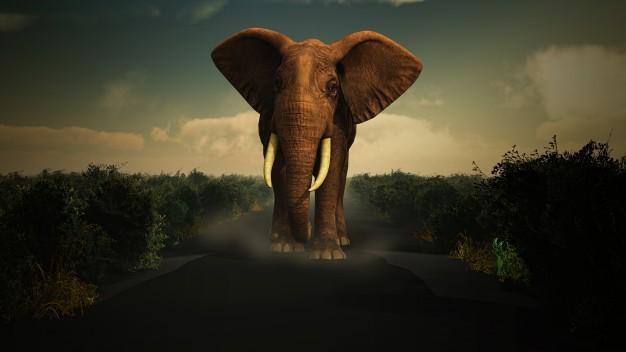 ฝันว่าช้างไล่